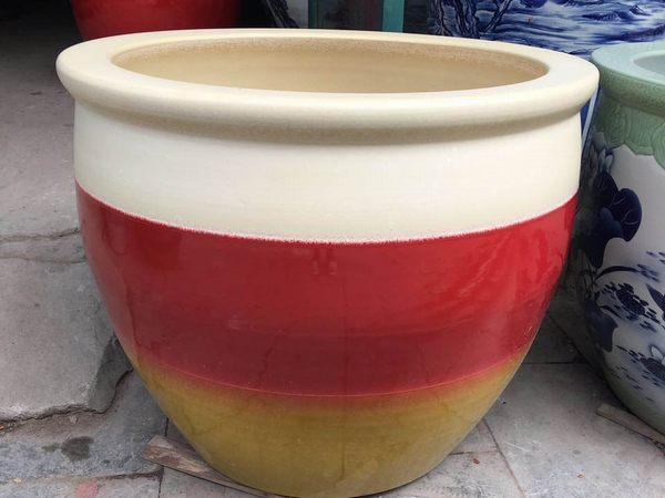 养鱼大花缸
